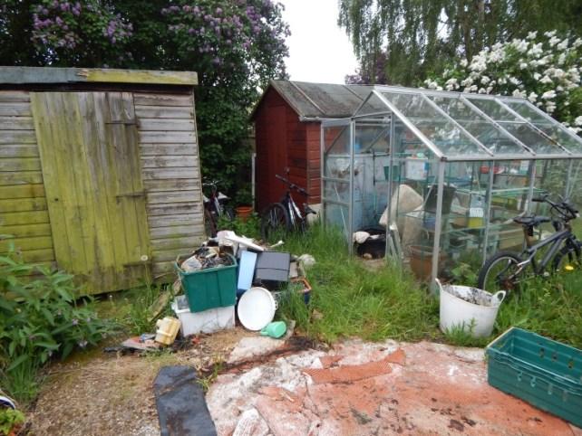 garden before 01
