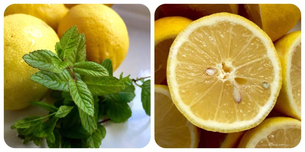 First easy step: Prepare your ingredients; rinse your lemons and mint ...