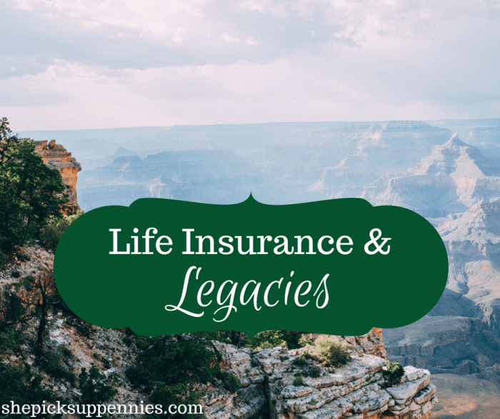 life insurance and legacies