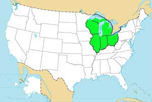 Us Map Of Great Lakes - Map of lakes in the us