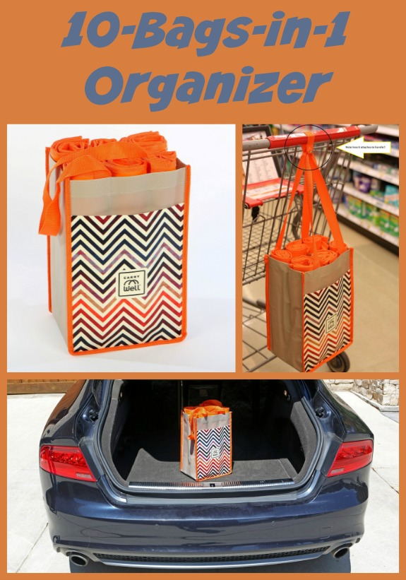 10-Bags-in-1 Organizer