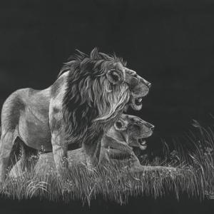 Sherry Steele Artwork - Full, But Still Tempted | Lions