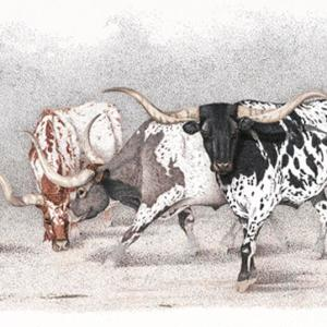 Sherry Steele Artwork - Legends of the West | Longhorns