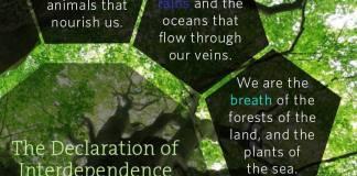 Declaration of Interdependence 1992