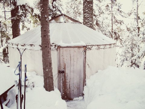 poplar-hill-yurt1