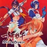 Mis Frikadas Favoritas: Ikkitousen ~ Shining Dragon