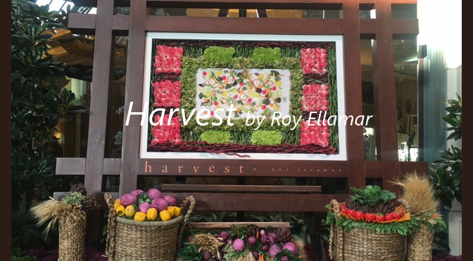 Harvest by Roy Ellamar Restaurant at Bellagio Las Vegas