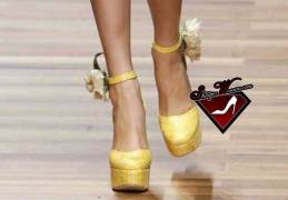 D&G Spring 2011 shoes
