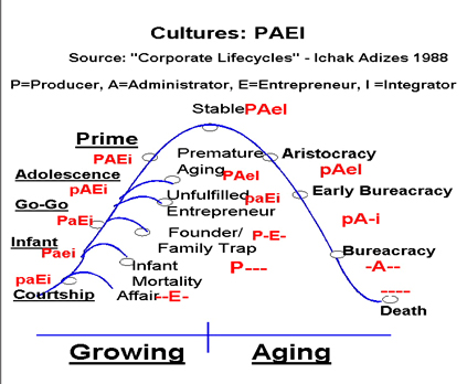 Соотношение PAEI и стадии жизненного цикла компании