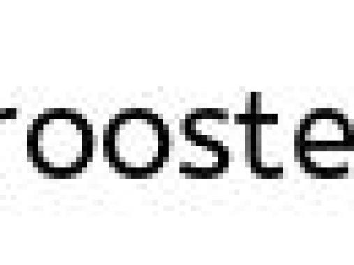 Bookcase #29