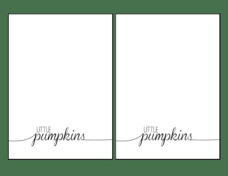 little-pumpkins-5x7