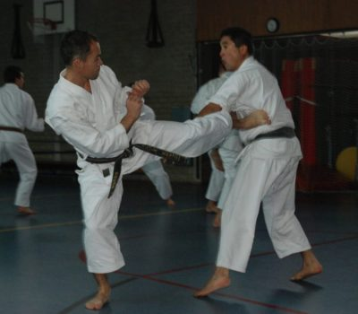 Shotokan Karate training