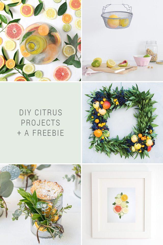http://i1.wp.com/www.shrimpsaladcircus.com/wp-content/uploads/2016/08/DIY-Citrus-Projects.jpg?fit=640%2C960