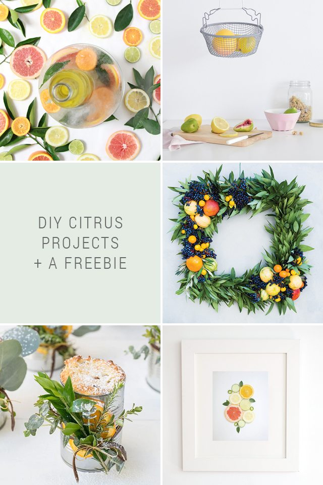 DIY Citrus Projects + Favorite Finds No. 89