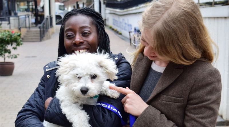 Sian Berry with Esther Obiri-Darko at Battersea Dogs and Cats home