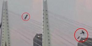 Skateboarder Grinds Suspension Bridge Falls