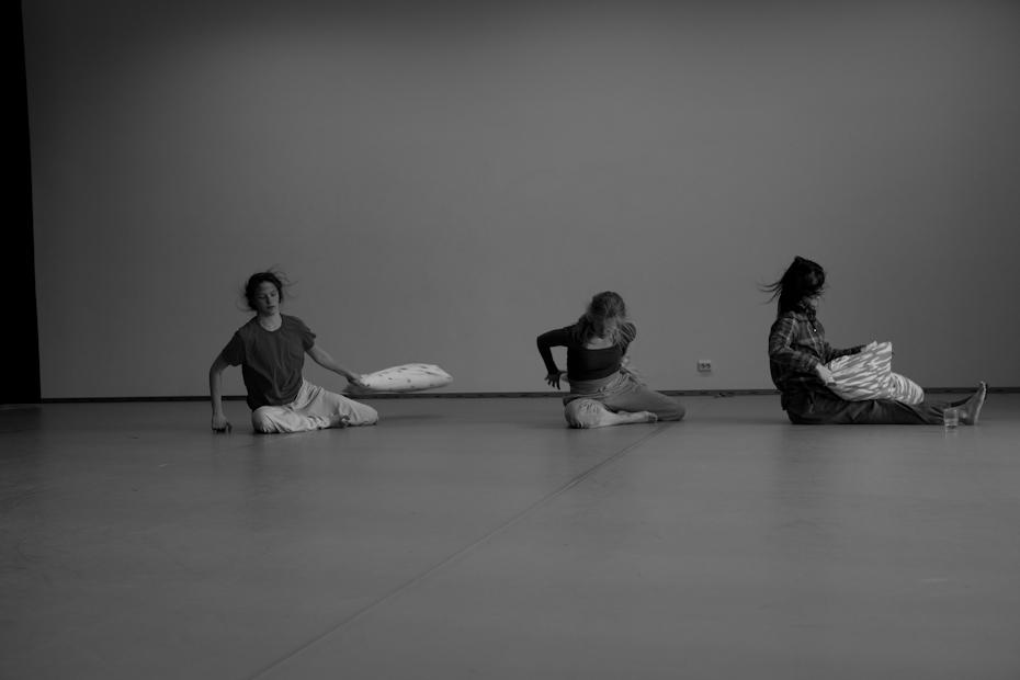 dansenord-5