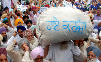 Image result for Punjab pension farmer