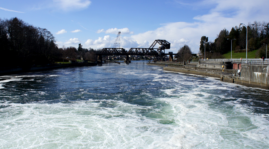 ballard-locks-seattle-washington-4