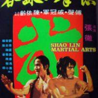 Shaolin Martial Arts (1974)