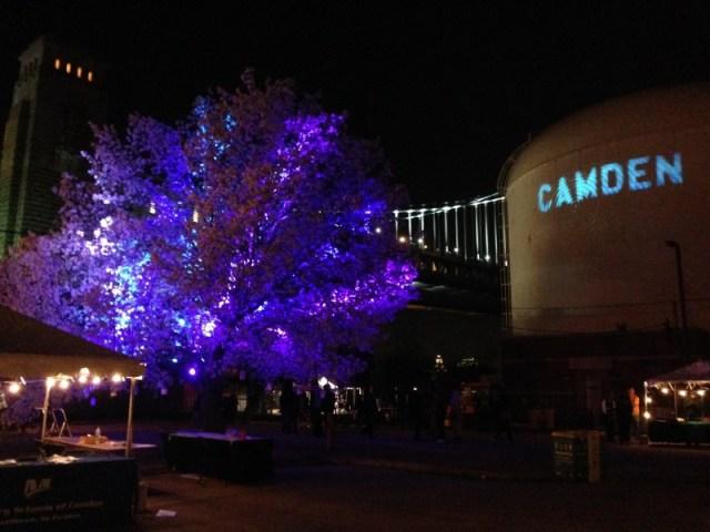 Camden Night Garden