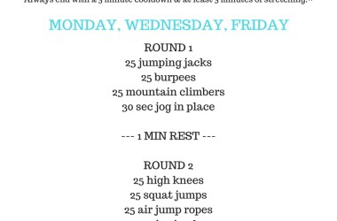 20 Minute Moderate to Intense Cardio Circuit