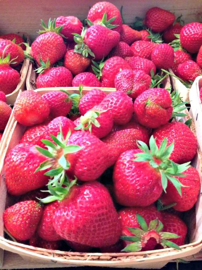 blog-strawberries 6