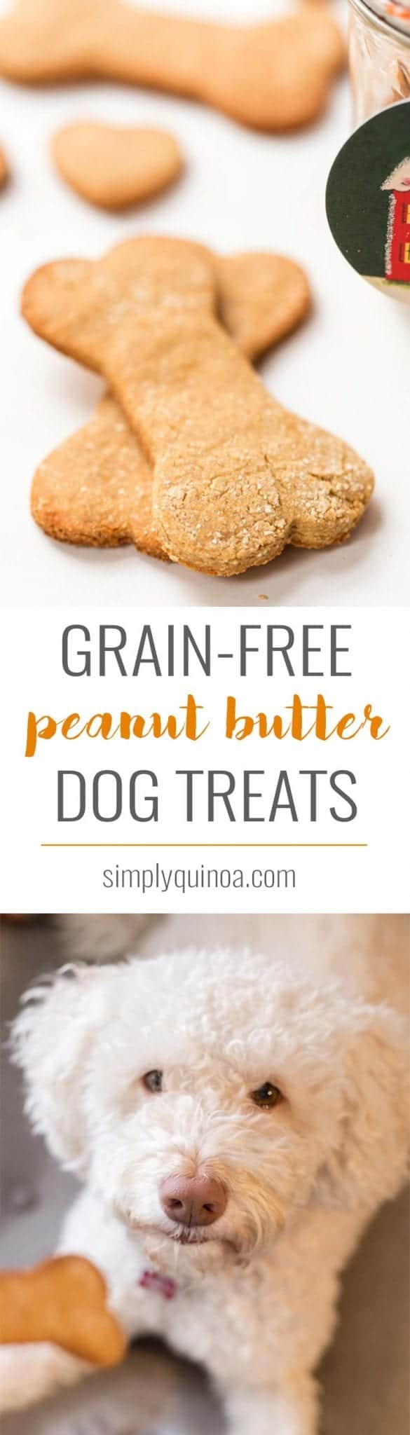 Garage Se Peanut Butter Dog Treats Are Easy Make A Peanut Butter Dog Treats Simply Quinoa Homemade Grain Free Liver Dog Treats Homemade Grain Free Potato Dog Treats Recipe bark post Homemade Grain Free Dog Treats