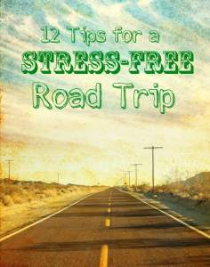 12 Tips for a Stress-Free Road Trip