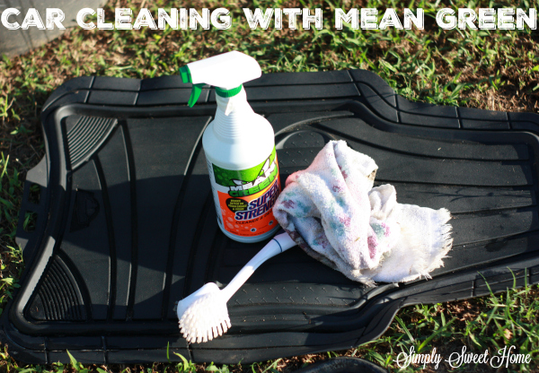 car-cleaning-with-mean-green