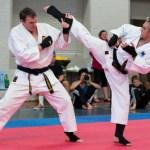 1363302437166_karate-dubbo-1-938x704