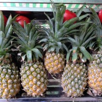 singapbyart.com-hanoi-fruits.jpg
