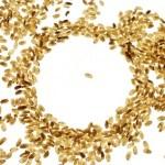 Lista de alimentos sin gluten ricos en fibra