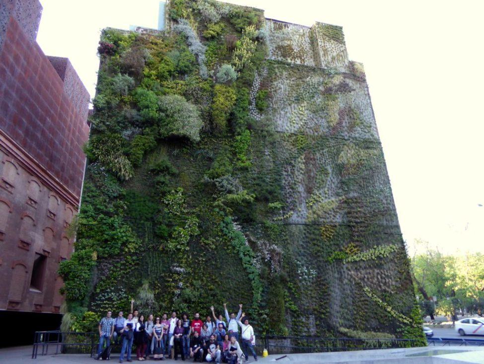 Curso de jardines verticales en madrid for Jardines 15 madrid