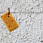 Fotografia minimalista en estado puro