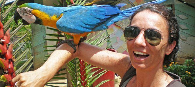 Guía de viaje: Iquitos