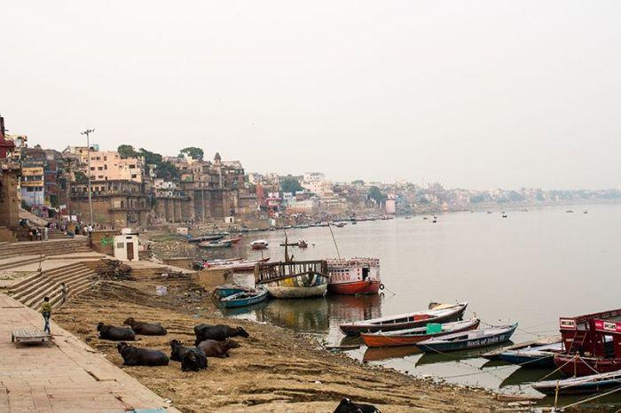 Vistas de la ribera occidental del río y algunos ghats
