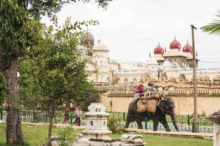 ELefante-palacio-mysore-webok