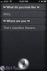What Do You Look Like? Siri Says