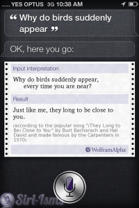 Why Do Birds Suddenly Appear? ~ Siri Quotes
