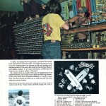 Frog House Skateboard Shop – 1975