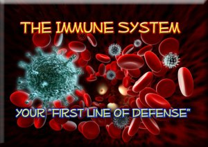Your immune system. Well, a tiny part of it.