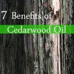 benefits of cedarwood oil