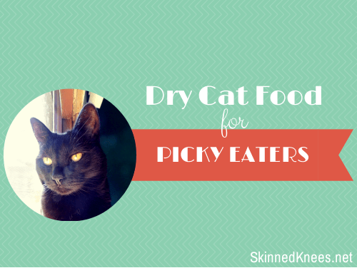 Dry Cat Food for Picky Eaters