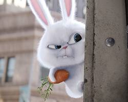 'The Secret Life of Pets' – New Trailer & Images Released