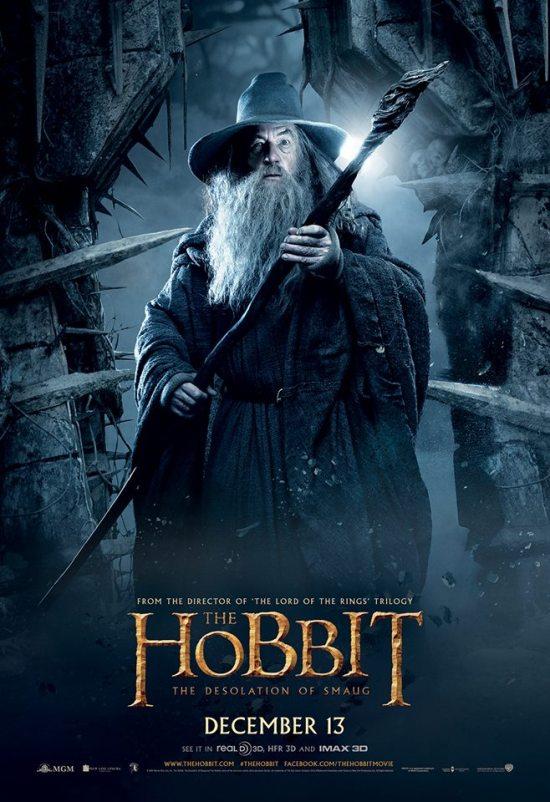 The Hobbit The Desolation of Smaug - Gandalf