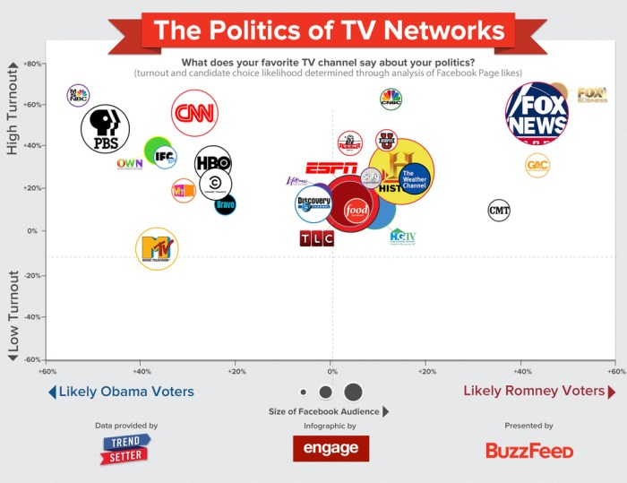 The Politics of TV Networks