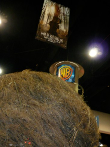 sdcc09_wildthings4