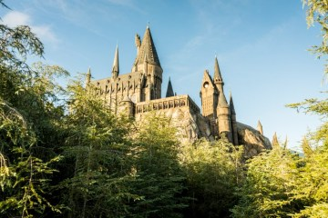 Wizarding World of Harry Potter Trees