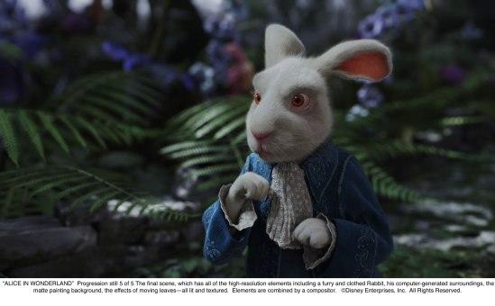 Alice in Wonderland: White Rabbit Progression 5 of 5